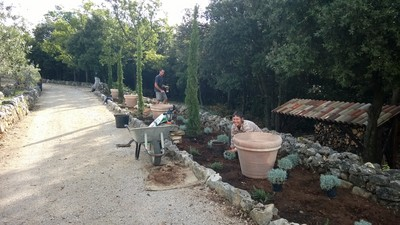 Work with a smile - Nadine and Nico planting cyprus trees and even more lavender.
