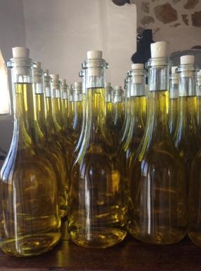 Bottled Oil from Le Mas