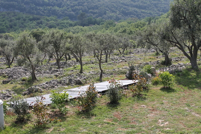 Solar panels to heat the pool against the backdrop of our olive terraces
